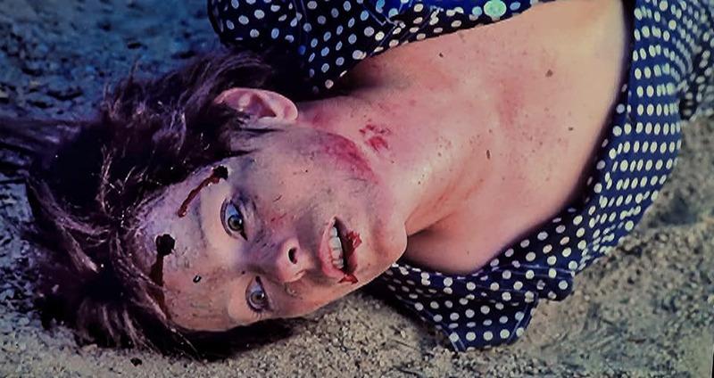 Geraldine Chaplin. (Ana y los lobos. Elías Querejeta Producciones Cinematográficas S.L. Olympusat. 1973.)