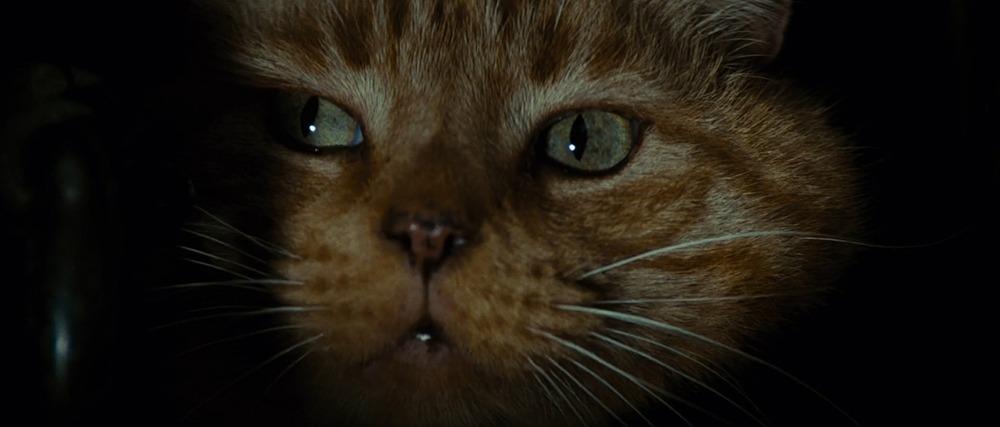 Jonesy. (Alien. 20th Century Fox, Brandywine Productions. 1979.)