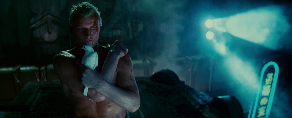 Rutger Hauer. (Blade Runner. Warner Bros., Ladd Company, Shaw Brothers. 1982.)